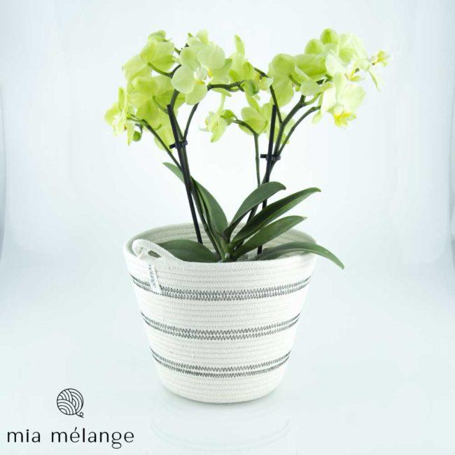 Cache-pot décoratif en coton – collection Polka Dot